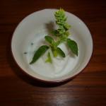Sorbet coco, citron vert et basilic